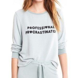 Wildfox Sweatshirt Professional Procrastinator Top